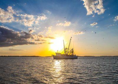 Amelia Island Cumberland Island Boat Tour-9240
