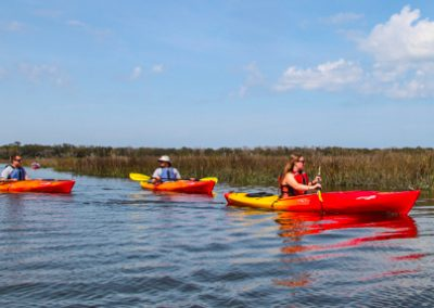 Egans Creek Kayak Tour Amelia Island-7910
