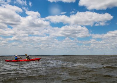 Amelia River Kayak Tour