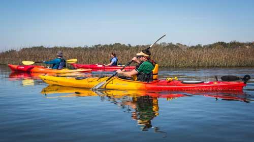Cumberland Island Dungeness Kayak Tour-6378